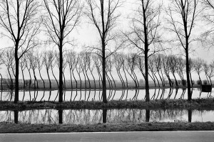 Netherlands, 1994. Strange reflections in a Dutch canal.