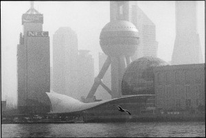 China, 2002. In the port district of Pudong, a real seagull flies in front of a theater in a shape of a giant gull.