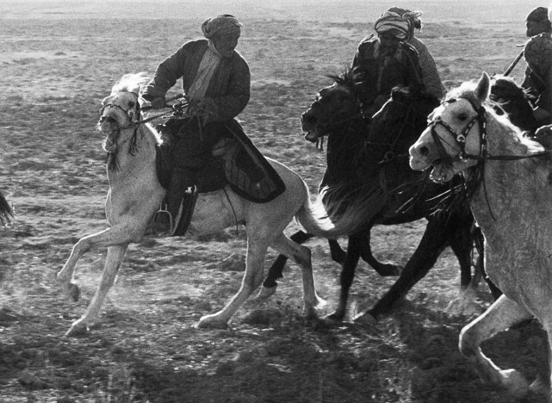 Jeu de bouzkachi, Afghanistan, 1955