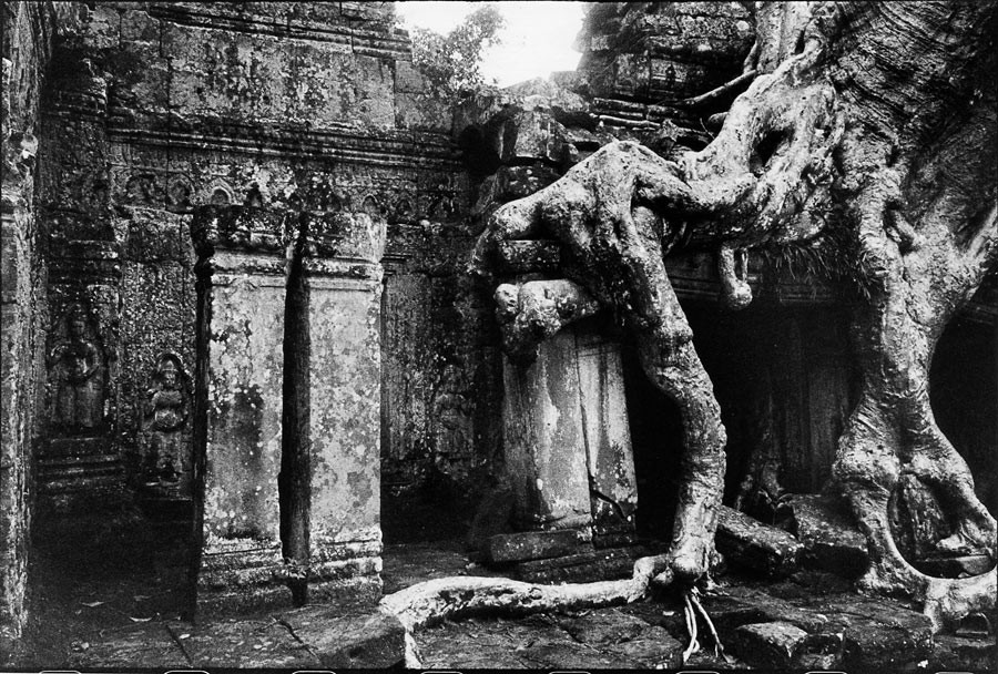 Temple de Tà Prohm, 1990