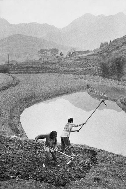 Travail de la terre dans la province du Sichuan, 1957