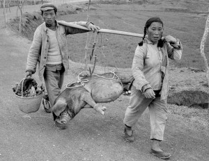 Peasants on their way to the market, 1965