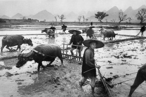 Peasants in Guangxi province, 1965