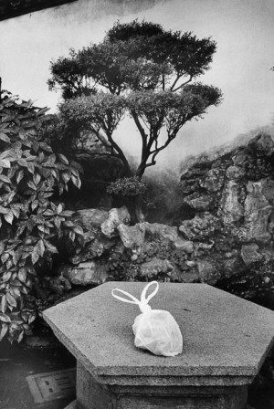 The little rabbit, Yu garden, Shanghai, 2002