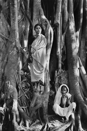 Refugee camp, in Krishnanagar, north of Calcutta, at the time of the partition between West and East Pakistan, 1971