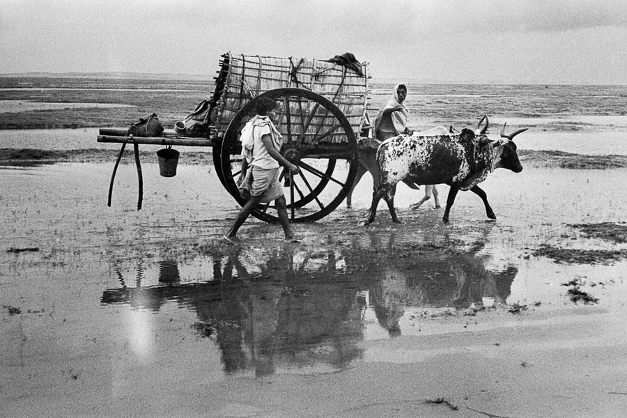 Entre Konarak et Puri, Orissa, 1956