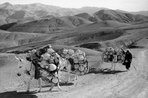 Près de la frontière turque, 1955