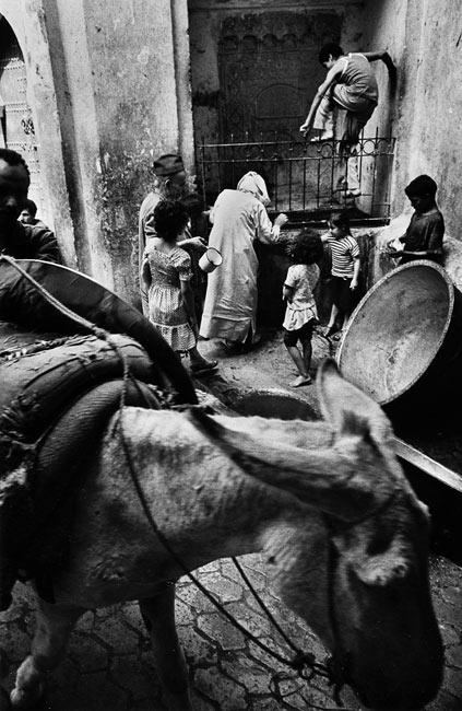 Fez, 1979
