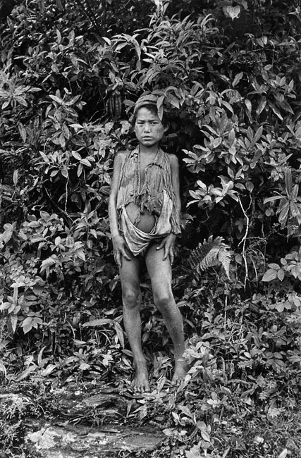 Le Petit sauvage, 1956