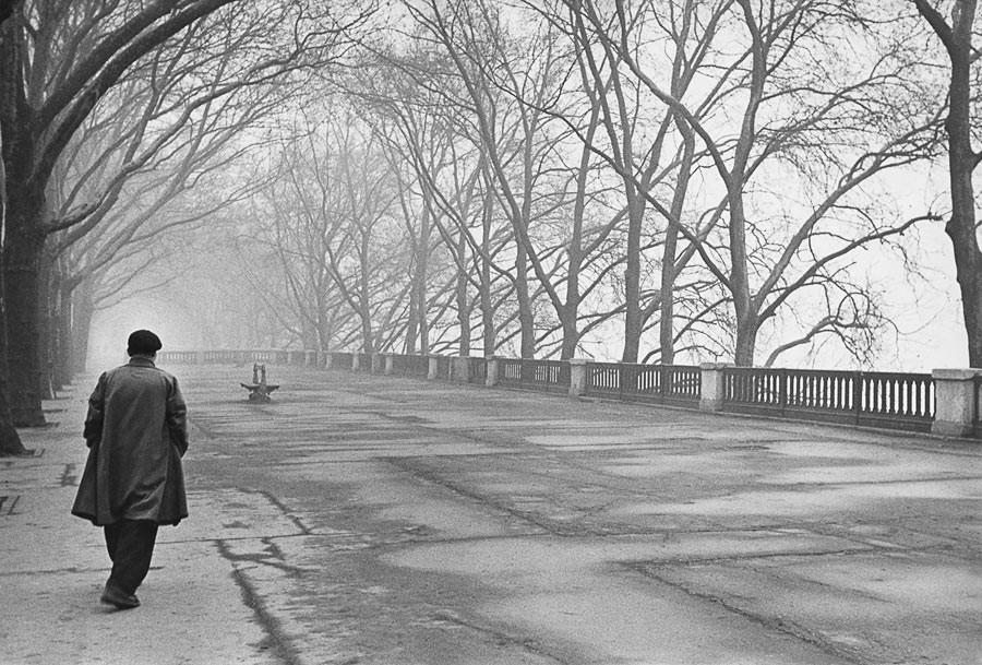 Quai de Bercy, 1953