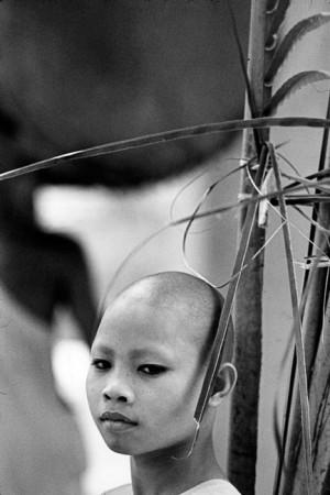 Cambodia, 1981