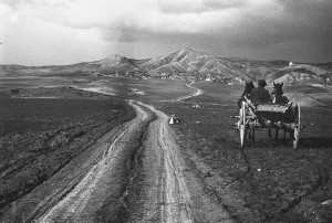Sur la route aux alentours de Van, 1955